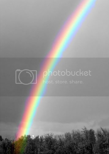 colour splash rainbow Pictures, Images and Photos